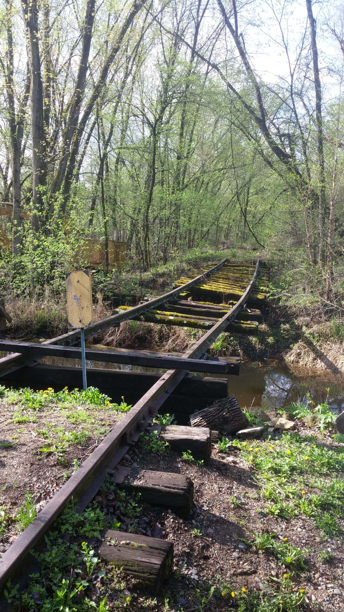 tracks over creek 2